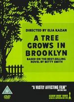 A Tree Grows in Brooklyn [Import Anglais]
