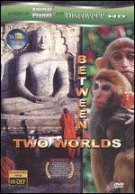 Wild Asia: Between Two Worlds