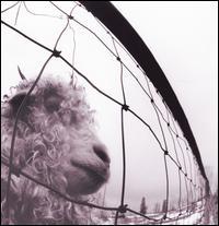 Vs. [LP] - Pearl Jam