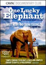 One Lucky Elephant