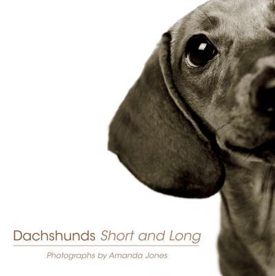 Dachshunds Short and Long - Jones, Amanda
