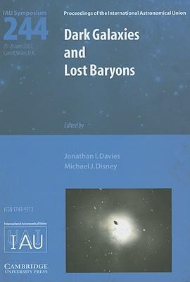 Dark Galaxies and Lost Baryons - Davies, Jonathan I (Editor)