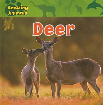 Deer - Wilsdon, Christina