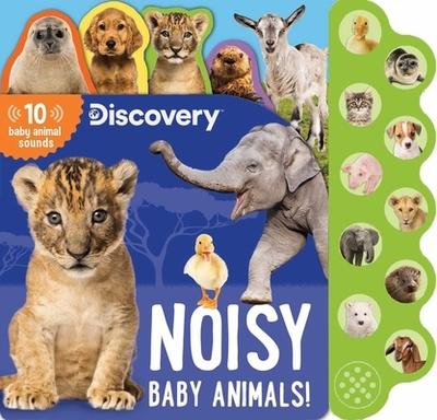 Discovery: Noisy Baby Animals! - Feldman, Thea