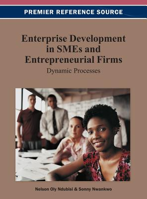 Enterprise Development in Smes and Entrepreneurial Firms: Dynamic Processes - Ndubisi