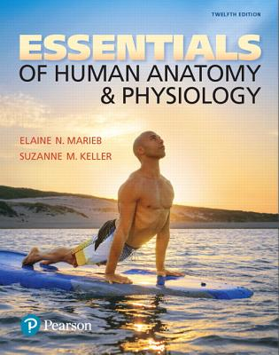 Essentials of Human Anatomy & Physiology book by Elaine Nicpon ...