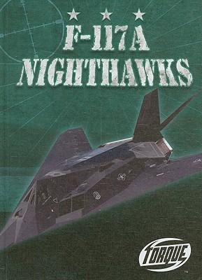 F-117A Nighthawks - Zobel, Derek