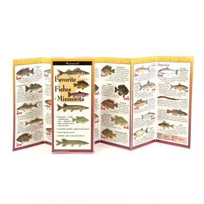 Favorite Fishes of Minnesota - Lewers, Steven