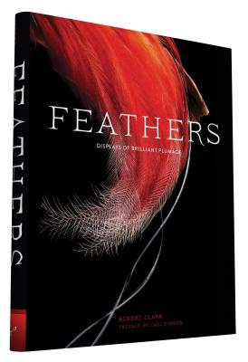 Feathers: Displays of Brilliant Plumage - Clark, Robert, and Zimmer, Carl (Preface by)