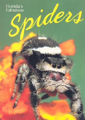 Florida's Fabulous Spiders - World Publications (Creator)