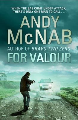 For Valour - McNab, Andy