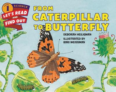 From Caterpillar to Butterfly - Heiligman, Deborah