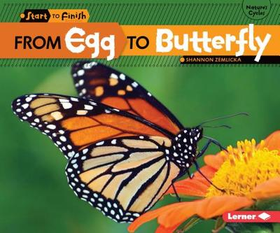From Egg to Butterfly - Zemlicka, Shannon