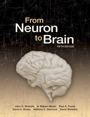 From Neuron to Brain - Nicholls, John G