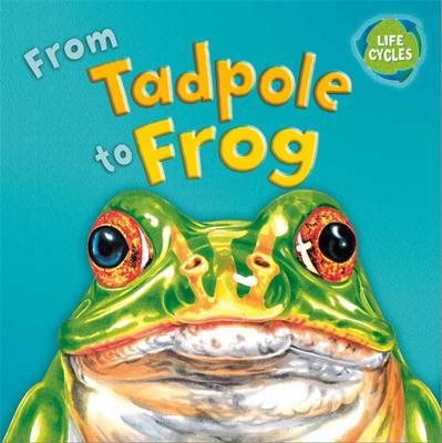 From Tadpole to Frog - Stewart, David