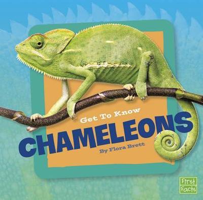 Get to Know Chameleons - Brett, Flora