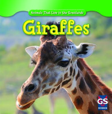 Giraffes - Shea, Mary Molly