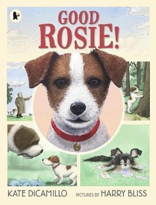 Good Rosie! - DiCamillo, Kate