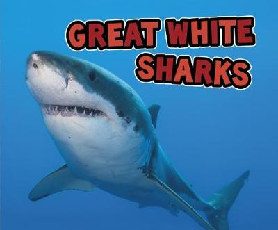 Great White Sharks - Nuzzolo, Deborah
