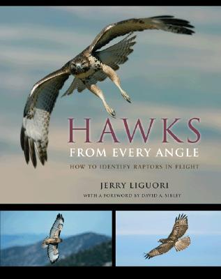 Hawks from Every Angle: How to Identify Raptors in Flight - Liguori, Jerry, and Sibley, David A (Foreword by)