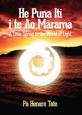 He Puna Iti i te ao Marama: A Little Spring in the World of Light - Tate, Pa Henare