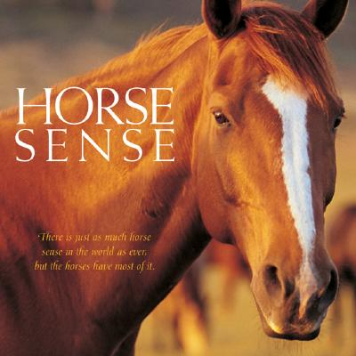 Horse Sense - Willow Creek Press