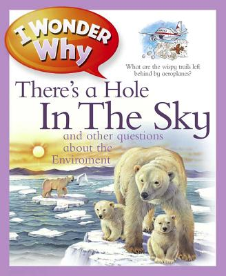 I Wonder Why There's a Hole in the Sky - Callery, Sean