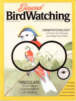 Beyond Birdwatching: More Than There is to Know About Birding
