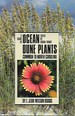 A Guide to Ocean Dune Plants Common to North Carolina
