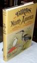 Studer's Popular Ornithology: the Birds of North America