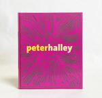 Peter Halley: Maintain Speed