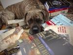 Kell's Books