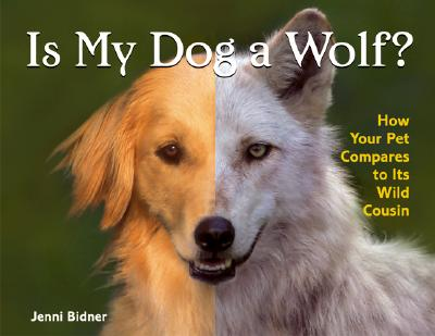 Is my dog a wolf how your pet compares to its wild for Jenni wolf