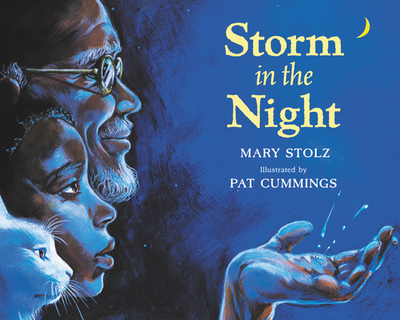 Storm in the Night - Stolz, Mary