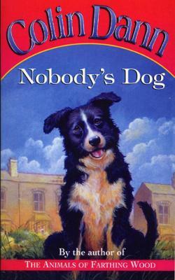 Nobody's Dog - Dann, Colin
