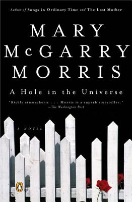A Hole in the Universe - Morris, Mary McGarry