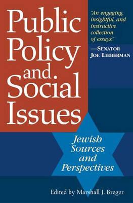 Public Policy and Social Issues: Jewish Sources and Perspectives - Breger, Marshall J (Editor)