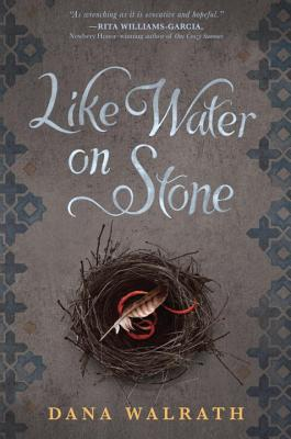 Like Water on Stone book cover