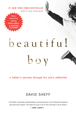 Beautiful Boy: A Father's Journey Through His Son's Addiction - Sheff, David