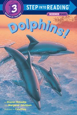 Dolphins! - Bokoske, Sharon, and Davidson, Margaret