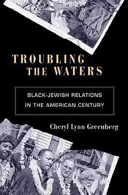 Troubling the Waters: Black-Jewish Relations in the American Century - Greenberg, Cheryl Lynn