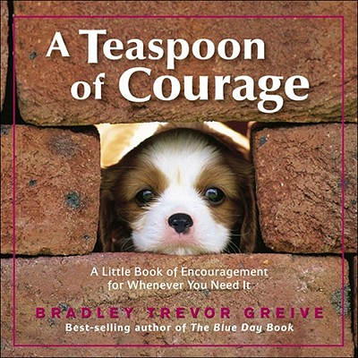 A Teaspoon of Courage: A Little Book of Encouragement for Whenever You Need It - Greive, Bradley Trevor