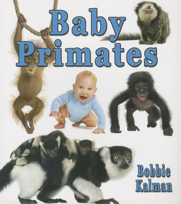 Baby Primates - Kalman, Bobbie