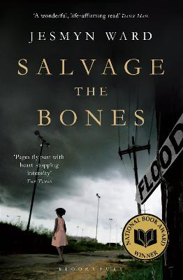Salvage the Bones - Ward, Jesmyn