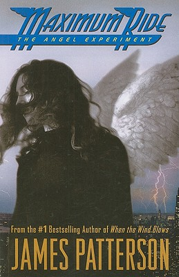 The Angel Experiment - Patterson, James
