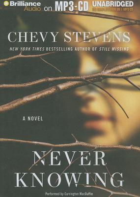 Never Knowing - Stevens, Chevy, and MacDuffie, Carrington (Performed by)