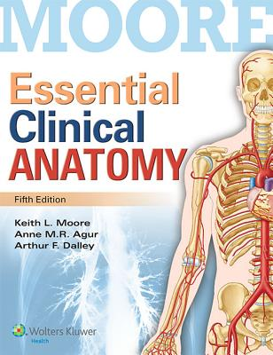 Essential Clinical Anatomy - Moore, Keith L, Dr., Msc, PhD, Fiac, Frsm, and Agur, Anne M R, M.SC., PH.D, and Dalley, Arthur F, PhD