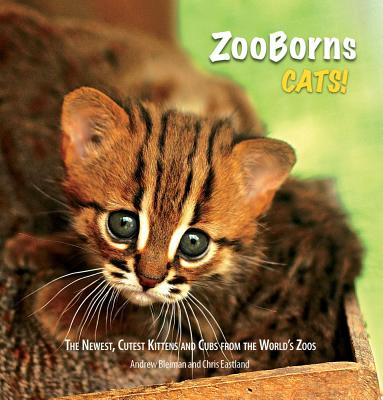 ZooBorns Cats!: The Newest, Cutest Kittens and Cubs from the World's Zoos - Bleiman, Andrew, and Eastland, Chris