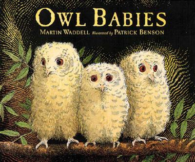 Owl Babies - Waddell, Martin