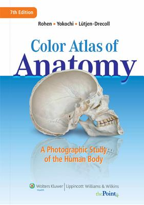 Color Atlas of Anatomy: A Photographic Study of the Human Body - Rohen, Johannes W, MD, and Yokochi, Chichiro, PhD, and Lutjen-Drecoll, Elke, MD